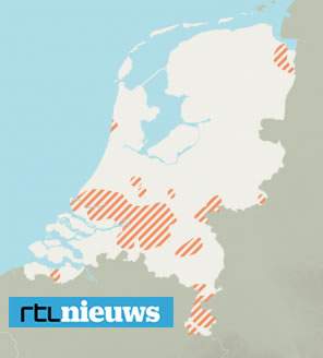 Buxusrups in Nederland