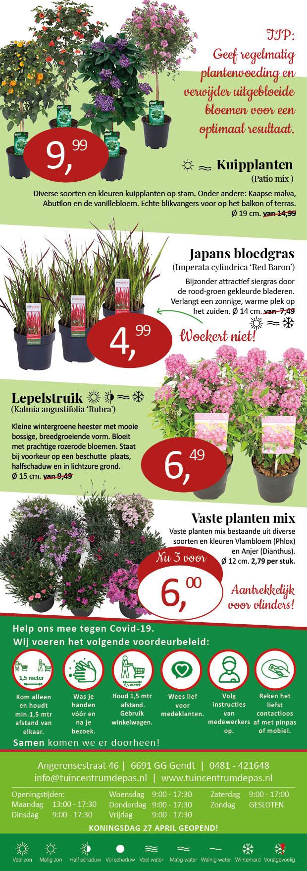 planten aanbieding Tuincentrum de Pas